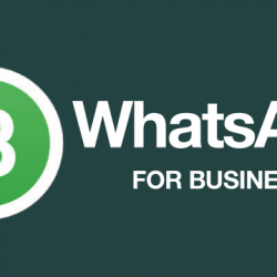 WhatsApp Business Official Logo