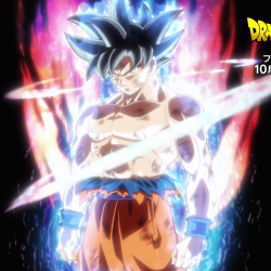 Mastered ultra instinct
