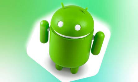 Google says you shouldn t hold your breath for android 11 beta 530119 2